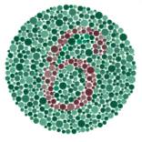 Teste de Visão de cores