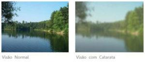 visão copy(1)